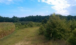 5 acres in Wilson NC in Camp Lejeune, North Carolina
